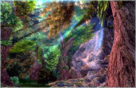 https://maessage.wordpress.com — effets de lumière dans une forêt • photo de Eirela LANE, photographe française : « Lumière forestière »